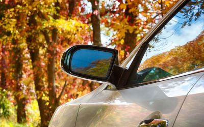Scenic Twin Cities Drives to Take in the Autumn